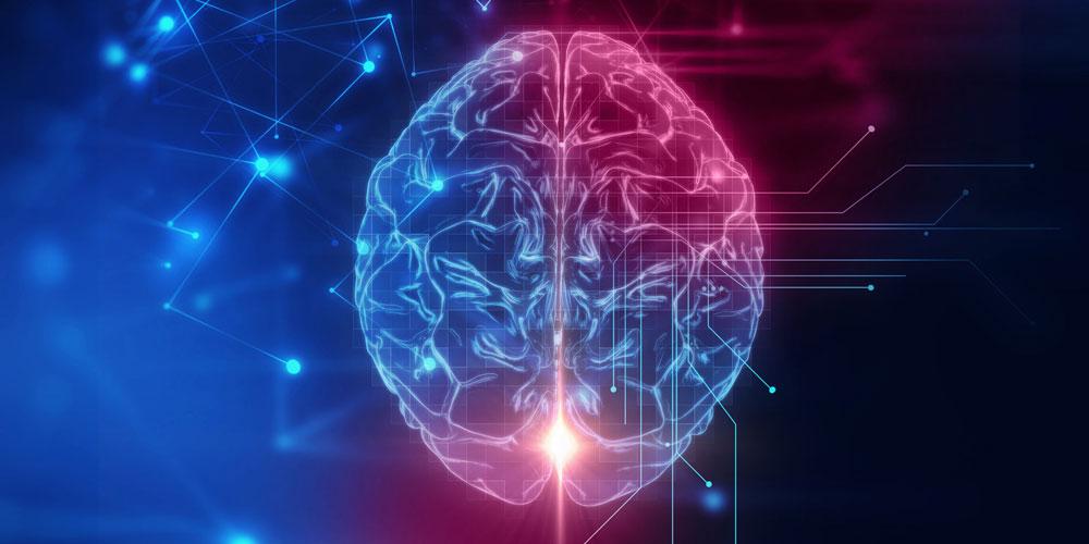 脳のスイッチ